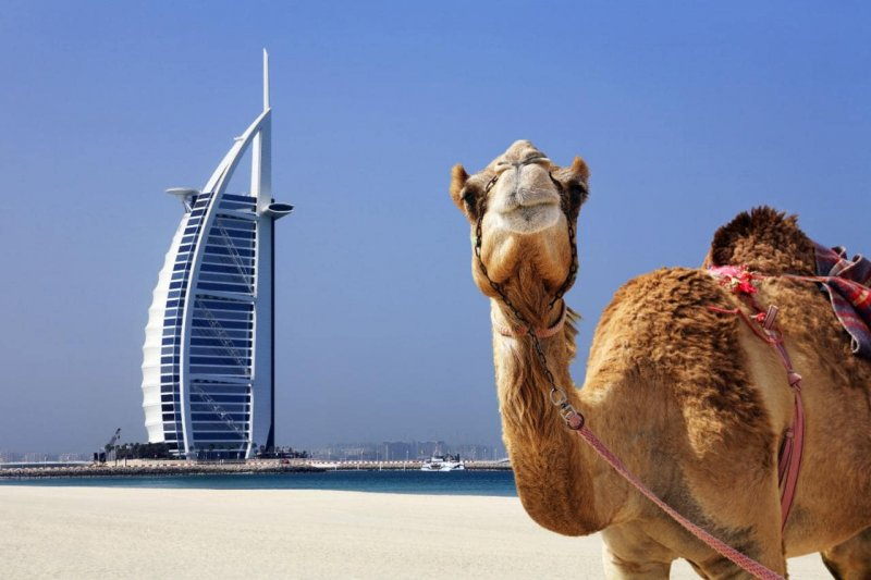 Are you planning to visit dubai